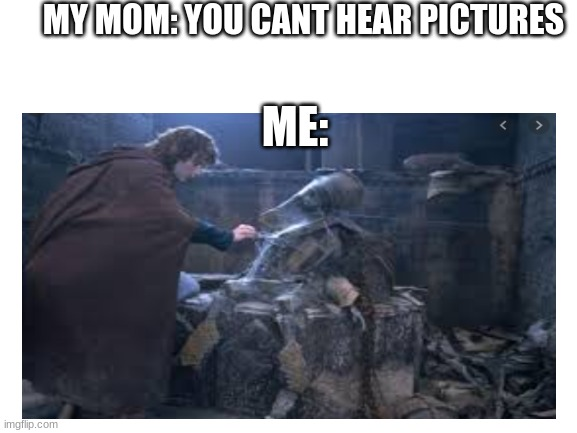 MY MOM: YOU CANT HEAR PICTURES; ME: | image tagged in merry and pippin,lord of the rings,skeleton | made w/ Imgflip meme maker