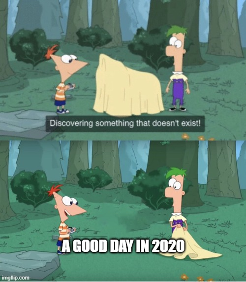 2020 in a nutshell |  A GOOD DAY IN 2020 | image tagged in discovering something that doesn t exist | made w/ Imgflip meme maker