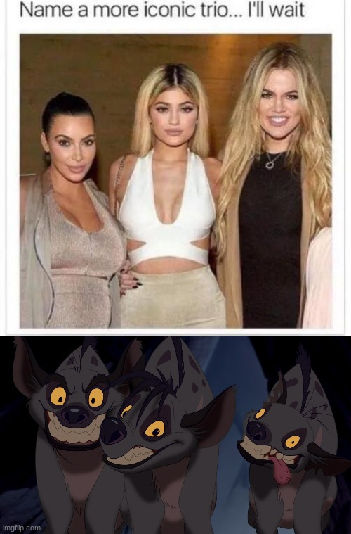 hyenas | image tagged in name a more iconic trio | made w/ Imgflip meme maker