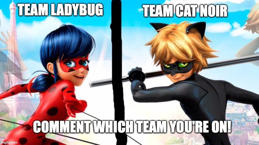 Team Ladybug or Team Cat Noir? |  TEAM CAT NOIR; TEAM LADYBUG; COMMENT WHICH TEAM YOU'RE ON! | image tagged in miraculous ladybug,team,choose wisely | made w/ Imgflip meme maker