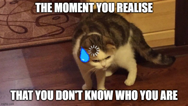 THE MOMENT YOU REALISE |  THE MOMENT YOU REALISE; THAT YOU DON'T KNOW WHO YOU ARE | image tagged in cat buffering | made w/ Imgflip meme maker
