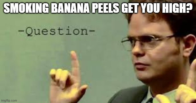 question asker |  SMOKING BANANA PEELS GET YOU HIGH? | image tagged in question asker | made w/ Imgflip meme maker
