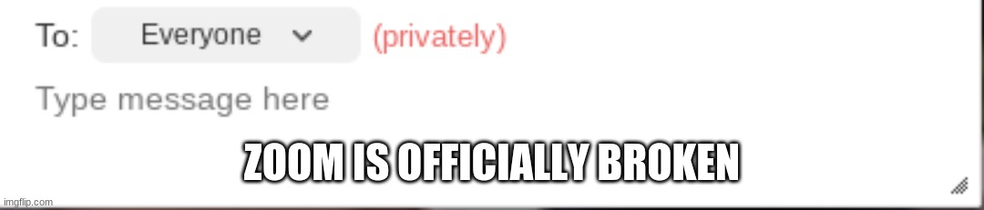 "Should I be concerned that it says ""to everyone privately""? 