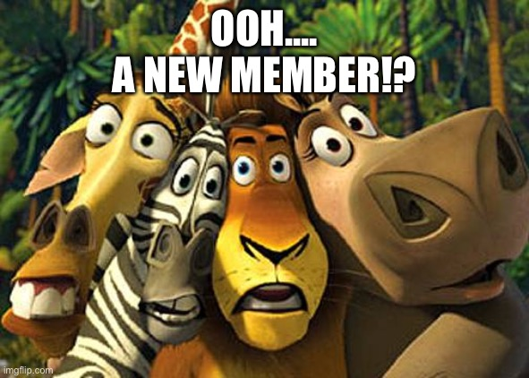 Discord welcome |  OOH.... A NEW MEMBER!? | image tagged in zoogang,you're welcome | made w/ Imgflip meme maker