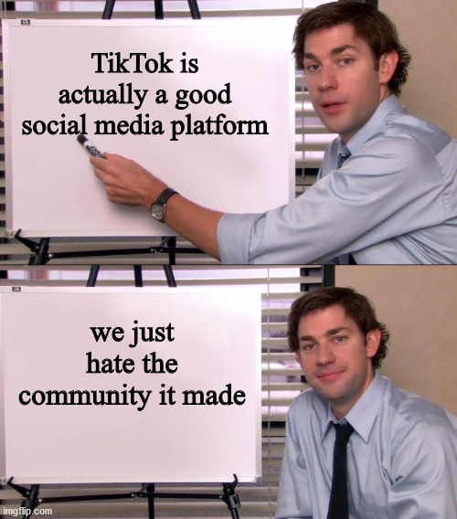 Jim Halpert Explains |  TikTok is actually a good social media platform; we just hate the community it made | image tagged in jim halpert explains | made w/ Imgflip meme maker