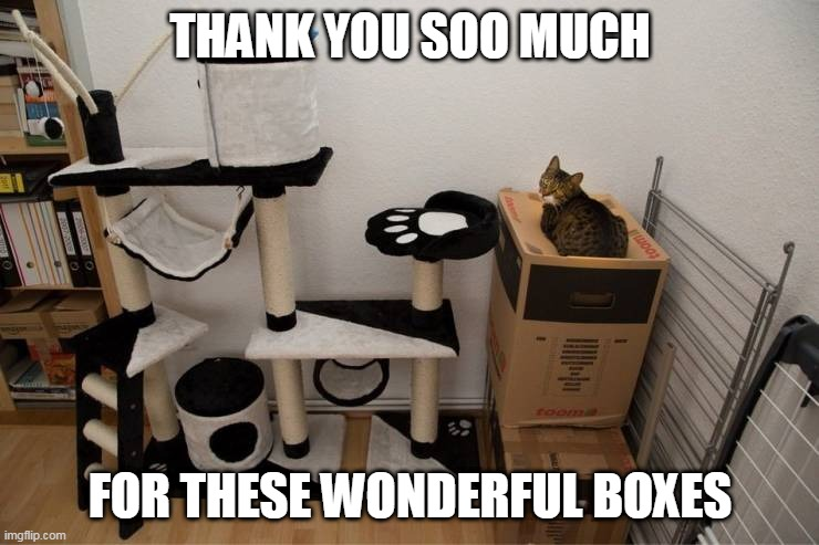 JUST GET YOUR CAT A BOX |  THANK YOU SOO MUCH; FOR THESE WONDERFUL BOXES | image tagged in cats,funny cats | made w/ Imgflip meme maker