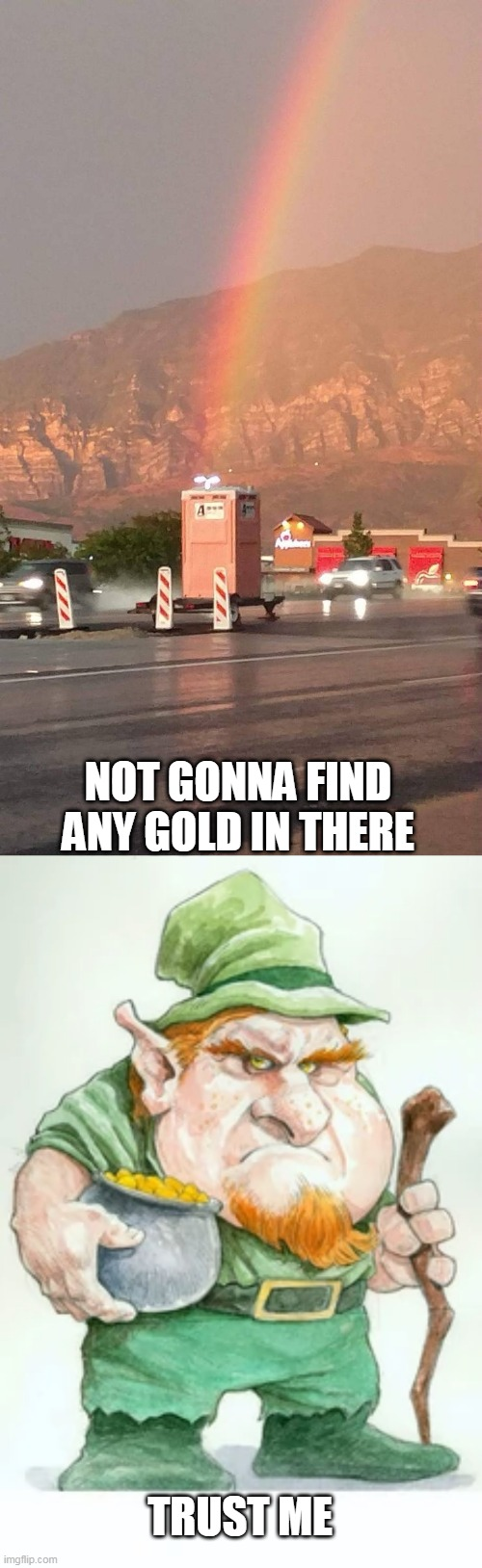 I'LL TAKE HIS WORD ON IT |  NOT GONNA FIND ANY GOLD IN THERE; TRUST ME | image tagged in memes,rainbow,leprechaun,toilet | made w/ Imgflip meme maker