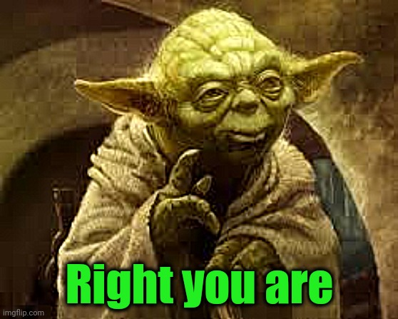 yoda | Right you are | image tagged in yoda | made w/ Imgflip meme maker