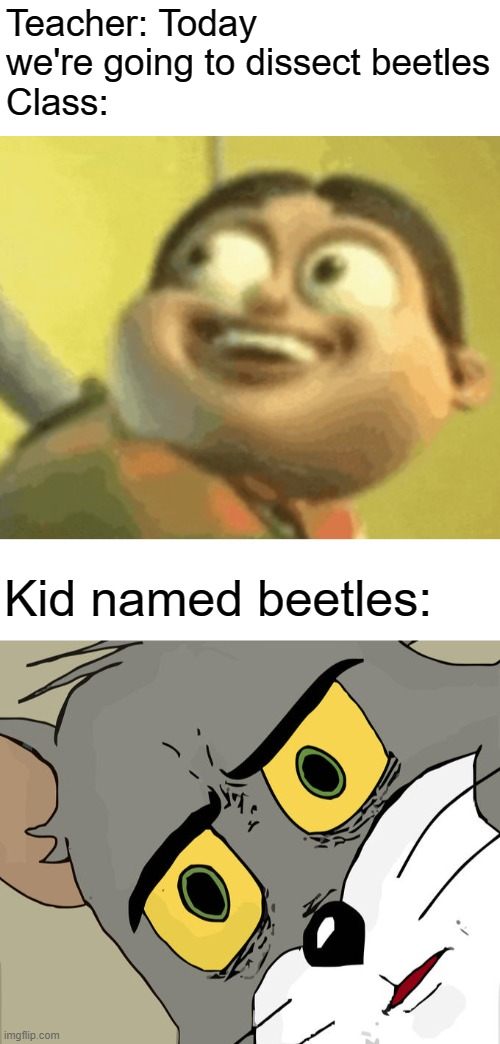 Teacher: Today we're going to dissect beetles Class:; Kid named beetles: | image tagged in memes,unsettled tom | made w/ Imgflip meme maker