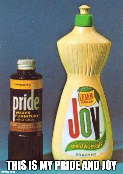 pride and joy pun |  THIS IS MY PRIDE AND JOY | image tagged in pride and joy | made w/ Imgflip meme maker
