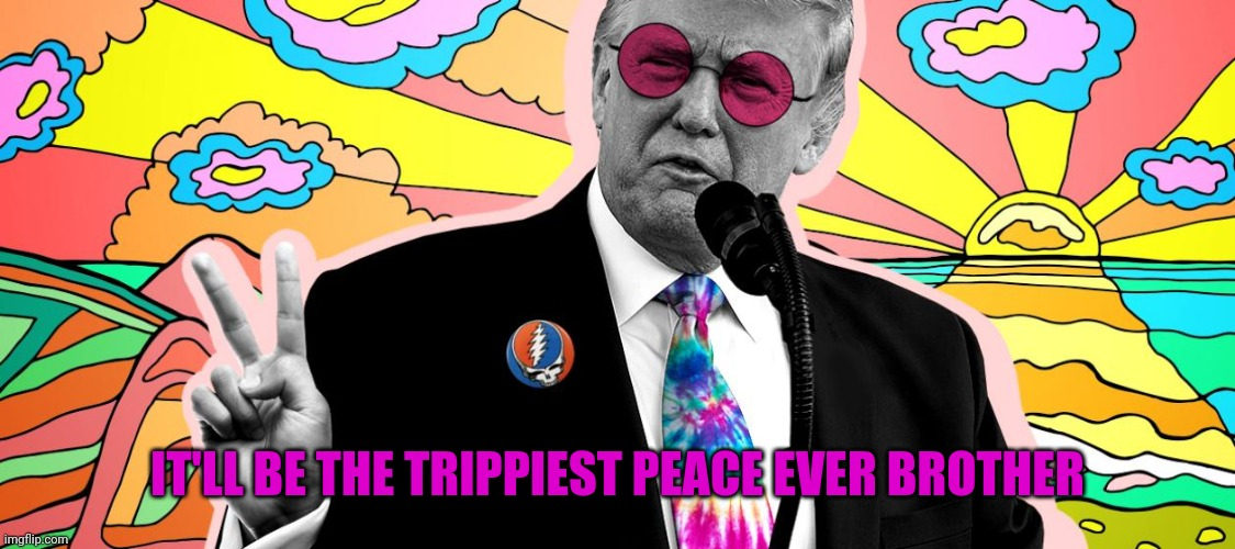 IT'LL BE THE TRIPPIEST PEACE EVER BROTHER | made w/ Imgflip meme maker