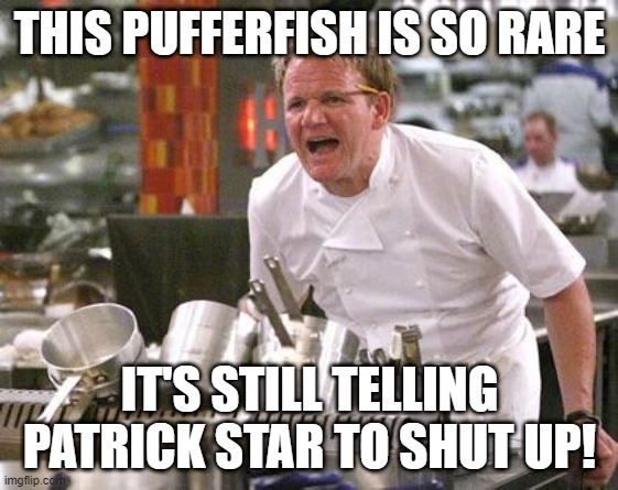 Chef Ramsay |  THIS PUFFERFISH IS SO RARE; IT'S STILL TELLING PATRICK STAR TO SHUT UP! | image tagged in chef ramsay,patrick star,fish,angry chef,funny memes,gordon ramsey | made w/ Imgflip meme maker
