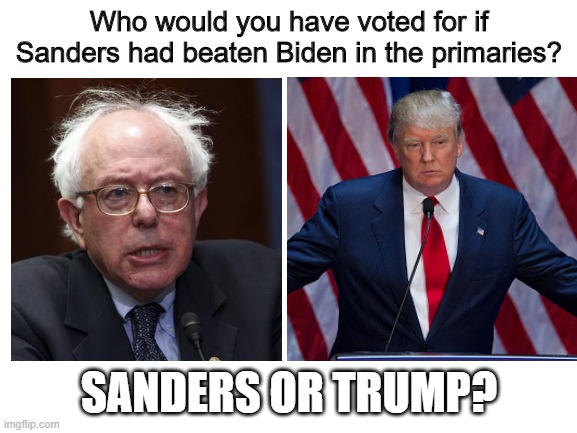 MOD edit: disrespectful comments are subject to deletion this is not the politics stream |  Who would you have voted for if Sanders had beaten Biden in the primaries? SANDERS OR TRUMP? | image tagged in blank white template,memes,politics,questions,donald trump,bernie sanders | made w/ Imgflip meme maker