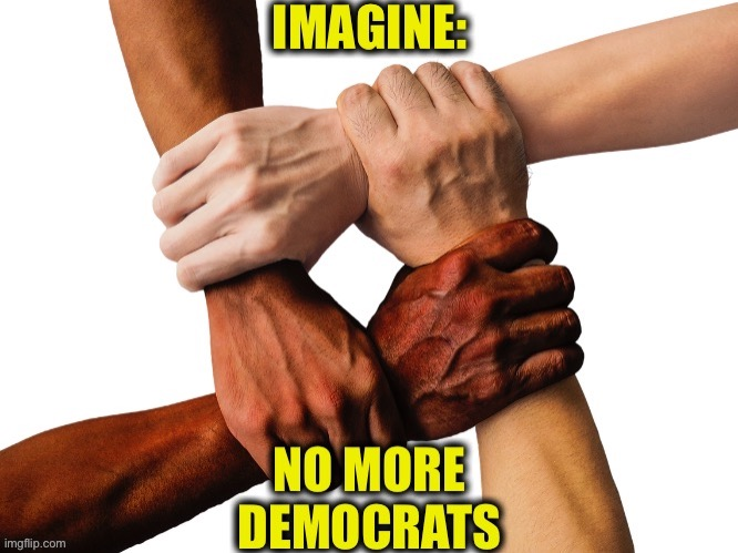The only true way to end racism | image tagged in democrats,democratic party,memes,racism,no racism | made w/ Imgflip meme maker
