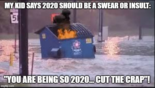 "2020 is an Insult |  MY KID SAYS 2020 SHOULD BE A SWEAR OR INSULT:; ""YOU ARE BEING SO 2020... CUT THE CRAP""! 