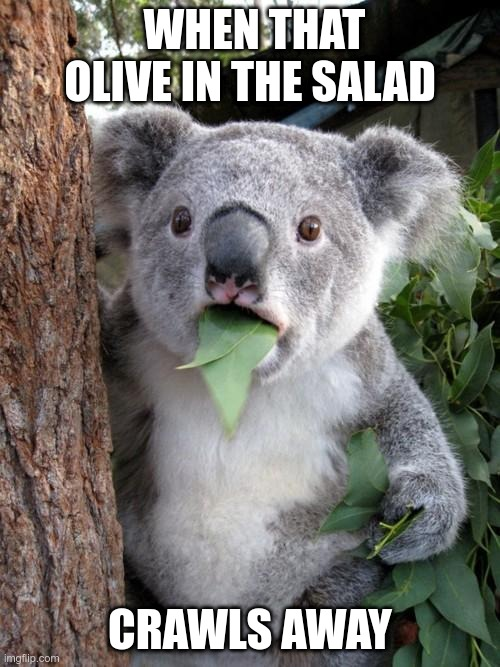 Tossing a Salad |  WHEN THAT OLIVE IN THE SALAD; CRAWLS AWAY | image tagged in memes,surprised koala | made w/ Imgflip meme maker