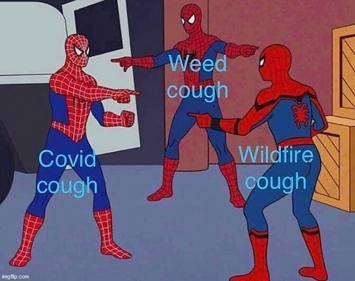 What is causing your cough? Mine is the wildfires. | image tagged in repost | made w/ Imgflip meme maker