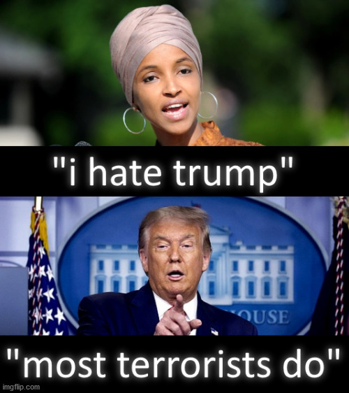 Ilhan Omar, I hate Donald Trump, Most Terrorists Do | image tagged in donaldtrump,ilhanomar,trump,terrorists,ihatetrump | made w/ Imgflip meme maker