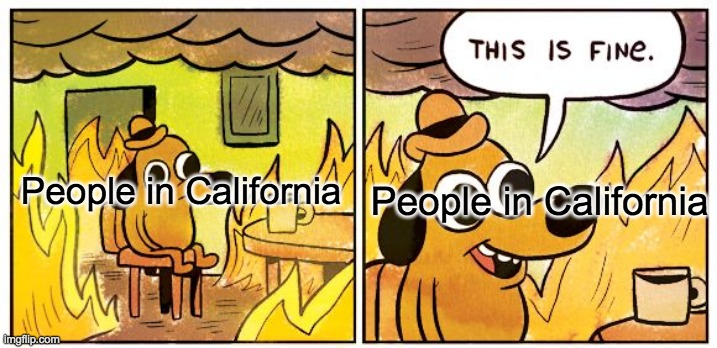 this is what is outside |  People in California; People in California | image tagged in memes,this is fine,california,wildfires,california fires | made w/ Imgflip meme maker