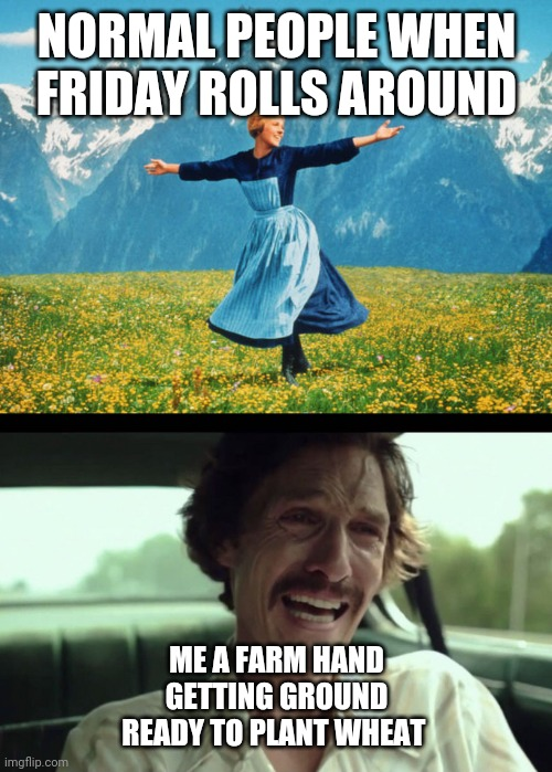 NORMAL PEOPLE WHEN FRIDAY ROLLS AROUND; ME A FARM HAND GETTING GROUND READY TO PLANT WHEAT | image tagged in matthew mcconaughey,sound of music | made w/ Imgflip meme maker