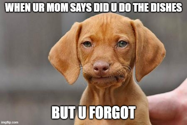 Disappointed puppy 2020 quarantine |  WHEN UR MOM SAYS DID U DO THE DISHES; BUT U FORGOT | image tagged in dissapointed puppy,memes,coronavirus,quarantine,upvote if you agree,upvote | made w/ Imgflip meme maker