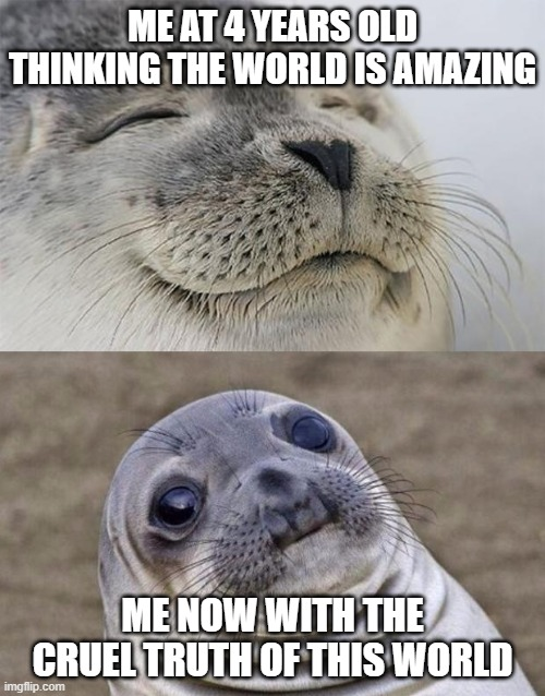 sad |  ME AT 4 YEARS OLD THINKING THE WORLD IS AMAZING; ME NOW WITH THE CRUEL TRUTH OF THIS WORLD | image tagged in memes,short satisfaction vs truth | made w/ Imgflip meme maker