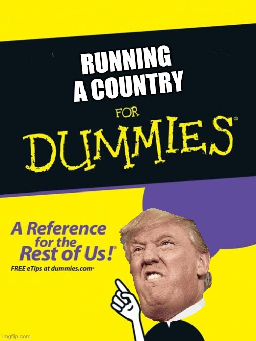 For dummies book |  RUNNING A COUNTRY | image tagged in for dummies book,trump 2020 | made w/ Imgflip meme maker