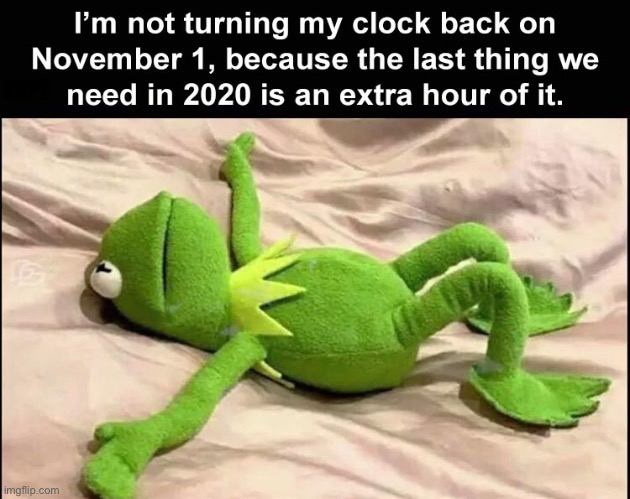 Not going to do it |  NOPE | image tagged in daylight savings,november,time,2020,kermit,memes | made w/ Imgflip meme maker