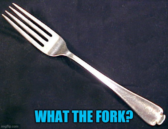 fork | WHAT THE FORK? | image tagged in fork | made w/ Imgflip meme maker
