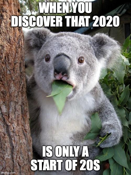 Surprised Koala 2020 |  WHEN YOU DISCOVER THAT 2020; IS ONLY A START OF 20S | image tagged in memes,surprised koala,2020,coronavirus,funny | made w/ Imgflip meme maker