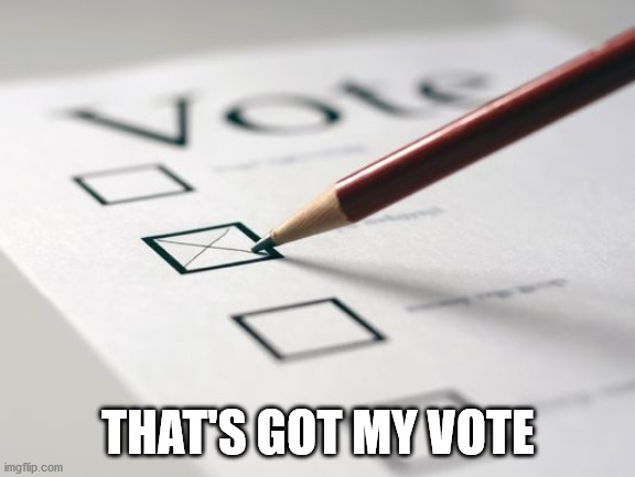 Voting Ballot | THAT'S GOT MY VOTE | image tagged in voting ballot | made w/ Imgflip meme maker