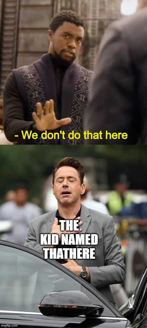 T'Challa and RDJ meme |  - We don't do that here; THE KID NAMED THATHERE | image tagged in we don't do that here,relieved rdj,black panther,memes,mcu,marvel | made w/ Imgflip meme maker