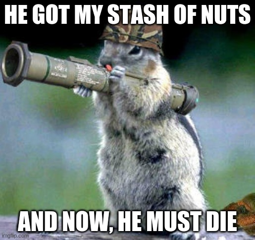The squirrel is Nuts |  HE GOT MY STASH OF NUTS; AND NOW, HE MUST DIE | image tagged in memes,bazooka squirrel | made w/ Imgflip meme maker