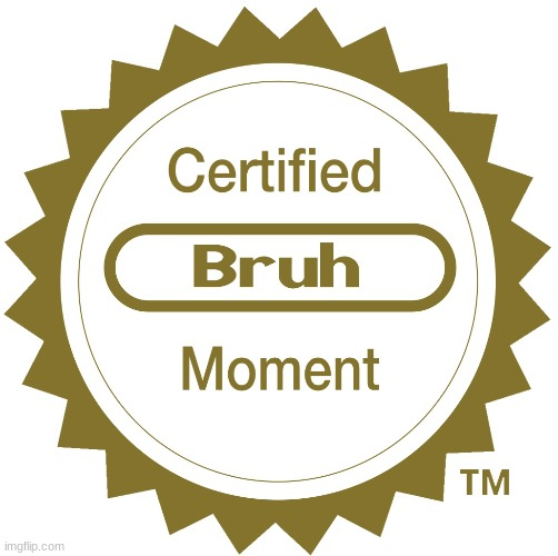 Certified bruh moment | image tagged in certified bruh moment | made w/ Imgflip meme maker