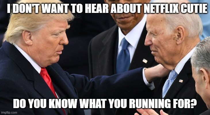Are you there? |  I DON'T WANT TO HEAR ABOUT NETFLIX CUTIE; DO YOU KNOW WHAT YOU RUNNING FOR? | image tagged in politics,political meme,donald trump,biden,kamala harris,netflix | made w/ Imgflip meme maker