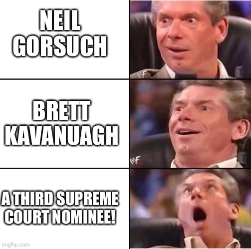 Thanks to RBG's arrogance, we can finally make the SCOTUS great again! |  NEIL GORSUCH; BRETT KAVANAUGH; A THIRD SUPREME COURT NOMINEE! | image tagged in vince mcmahon reaction | made w/ Imgflip meme maker