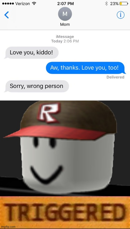 oops... | image tagged in roblox triggered,memes,funny,texting,mother,love | made w/ Imgflip meme maker