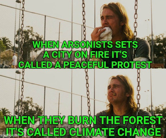 First World Stoner Problems |  WHEN ARSONISTS SETS A CITY ON FIRE IT'S CALLED A PEACEFUL PROTEST; WHEN THEY BURN THE FOREST IT'S CALLED CLIMATE CHANGE | image tagged in first world stoner problems,blm,arson,riots,riot | made w/ Imgflip meme maker