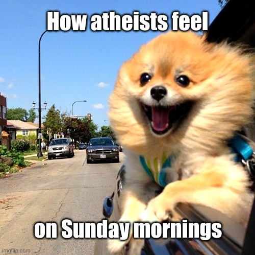 Atheists on Sunday mornings |  How atheists feel; on Sunday mornings | image tagged in atheists,church,sunday mornings | made w/ Imgflip meme maker