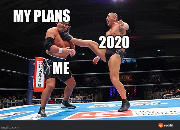 2020 out here killing me |  MY PLANS; 2020; ME | image tagged in wrestling,pro wrestling,japan,2020 | made w/ Imgflip meme maker