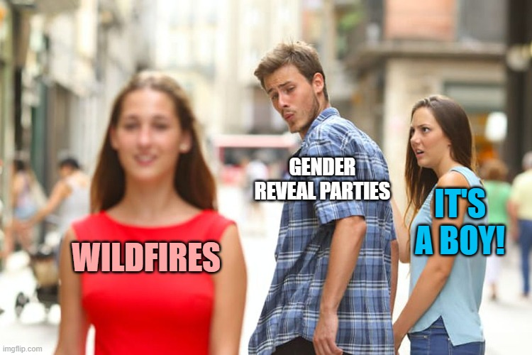 Last gender reveal meme for a while. |  GENDER REVEAL PARTIES; IT'S A BOY! WILDFIRES | image tagged in memes,distracted boyfriend,gender reveal,wildfires | made w/ Imgflip meme maker