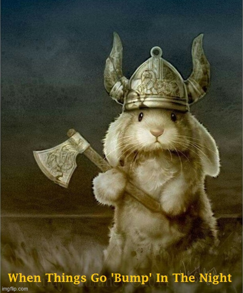 image tagged in bunny,viking,night | made w/ Imgflip meme maker