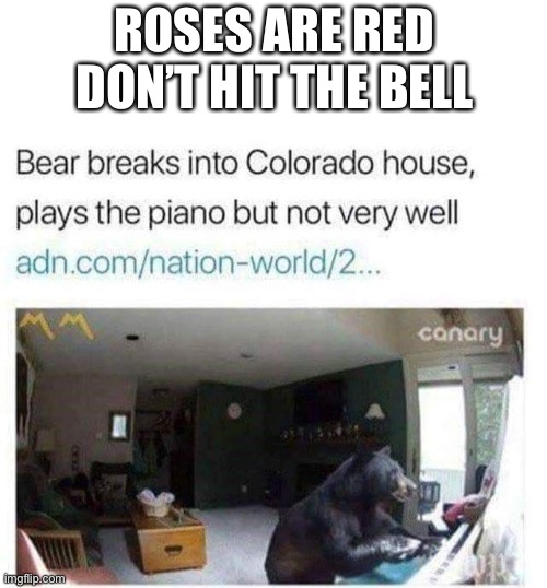 I mean at least he's trying right? |  ROSES ARE RED DON'T HIT THE BELL | image tagged in bear,roses are red violets are are blue,roses are red,isaac_laugh,piano | made w/ Imgflip meme maker