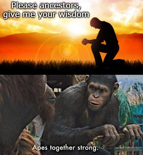 Please ancestors, give me your wisdom | image tagged in now more than ever | made w/ Imgflip meme maker