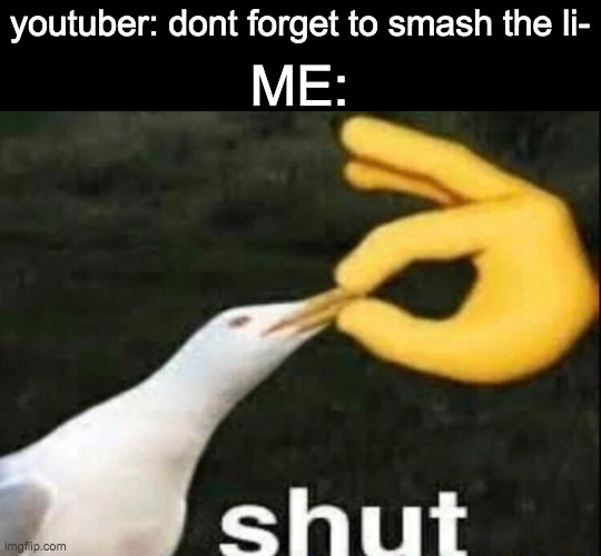 SHUT |  youtuber: dont forget to smash the li-; ME: | image tagged in shut,youtube,youtuber,memes | made w/ Imgflip meme maker