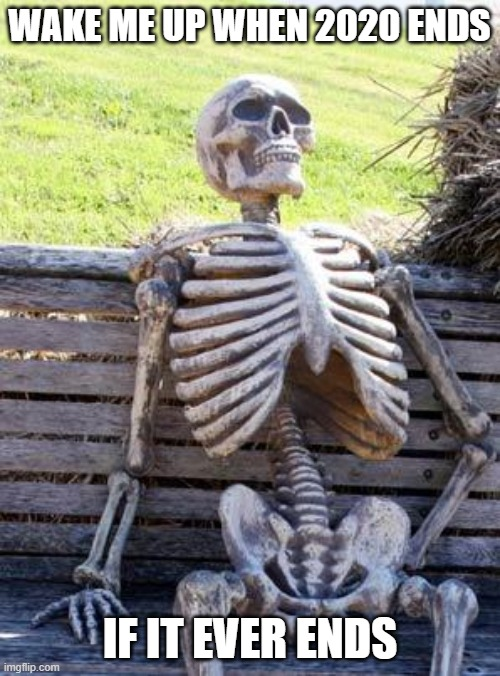 Waiting on 2020 to end |  WAKE ME UP WHEN 2020 ENDS; IF IT EVER ENDS | image tagged in memes,waiting skeleton,2020 sucks | made w/ Imgflip meme maker