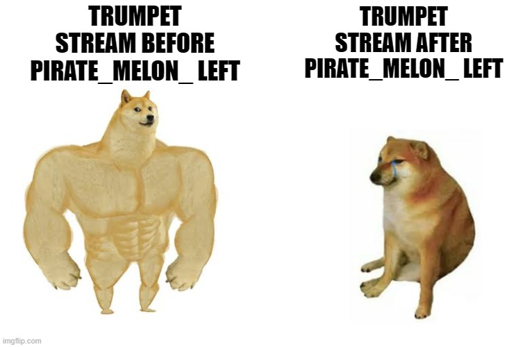 It's just sitting there, like a rotting skeleton |  TRUMPET STREAM BEFORE PIRATE_MELON_ LEFT; TRUMPET STREAM AFTER PIRATE_MELON_ LEFT | image tagged in strong doge weak doge,memes,trumpet,stream,pirate-melon | made w/ Imgflip meme maker