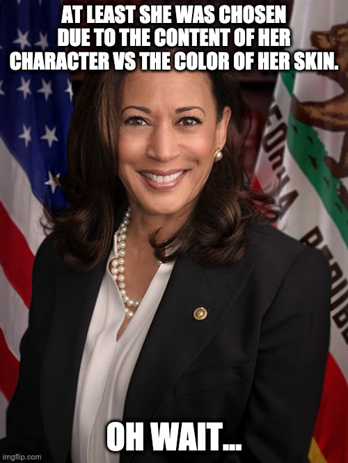 Kamala Harris Facts |  AT LEAST SHE WAS CHOSEN DUE TO THE CONTENT OF HER CHARACTER VS THE COLOR OF HER SKIN. OH WAIT... | image tagged in joe biden,kamala harris,racism,reverse racism,democrats | made w/ Imgflip meme maker