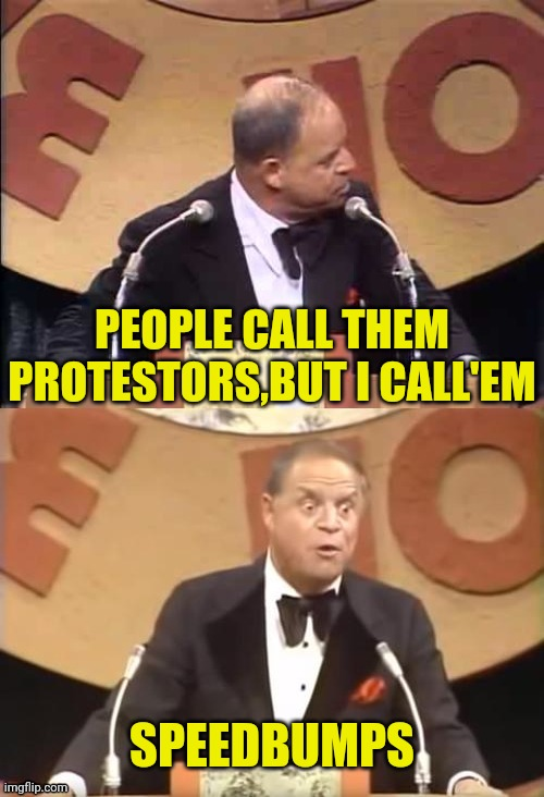 Don Rickles Roast | PEOPLE CALL THEM PROTESTORS,BUT I CALL'EM SPEEDBUMPS | image tagged in don rickles roast | made w/ Imgflip meme maker