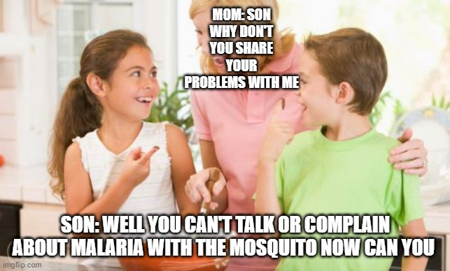 Frustrating Mom |  MOM: SON WHY DON'T YOU SHARE YOUR PROBLEMS WITH ME; SON: WELL YOU CAN'T TALK OR COMPLAIN ABOUT MALARIA WITH THE MOSQUITO NOW CAN YOU | image tagged in memes,frustrating mom | made w/ Imgflip meme maker